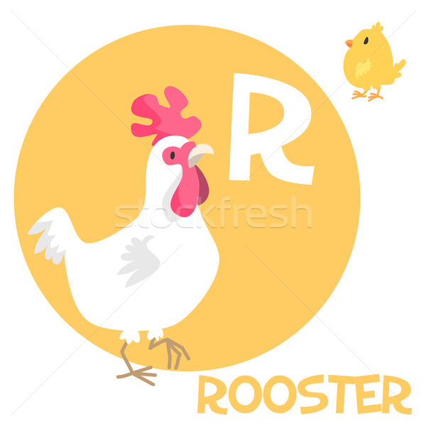 Funny cartoon animals vector alphabet letter set for kids. R is rooster.   Stock photo © Dashikka