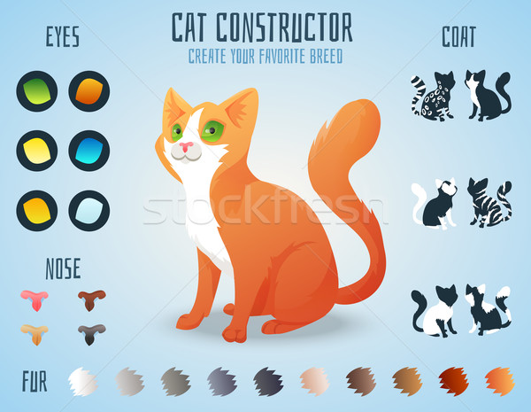 Cute cat breed constructor. You can create your own kitten breed. Change color, eyes, noses, types o Stock photo © Dashikka