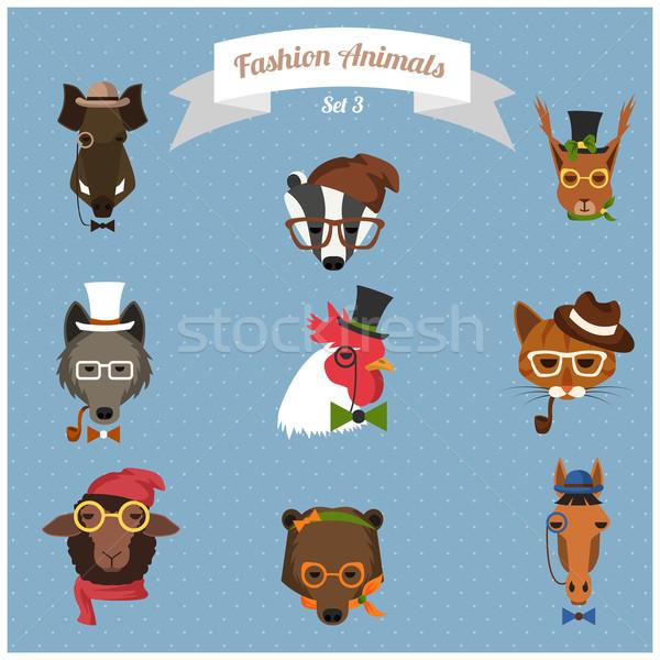 Stock fotó: Divat · hipszter · állatok · szett · aranyos · macska