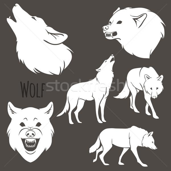 Grey Wolf Silhouette set Stock photo © Dashikka