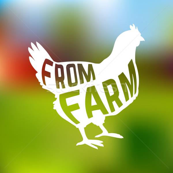 Stock fotó: Sziluett · farm · tyúk · szöveg · bent · homály