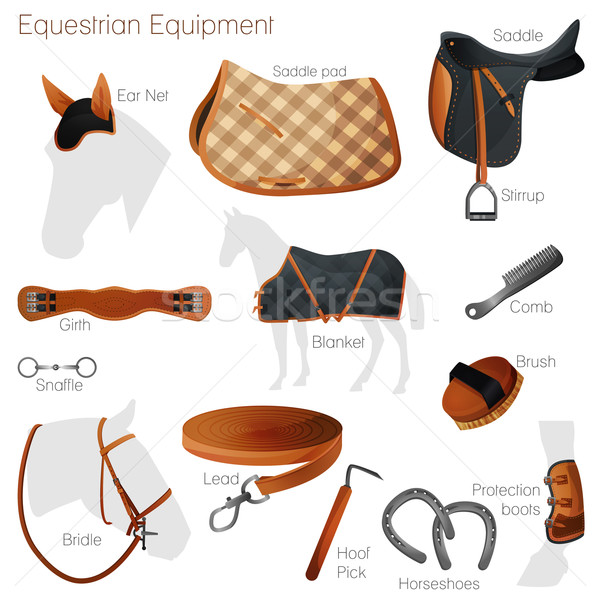 Set of equestrian equipment. Vector. Stock photo © Dashikka