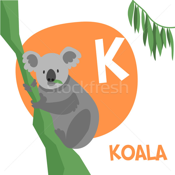 Funny cartoon animals vector alphabet letter set for kids. K is Koala.   Stock photo © Dashikka