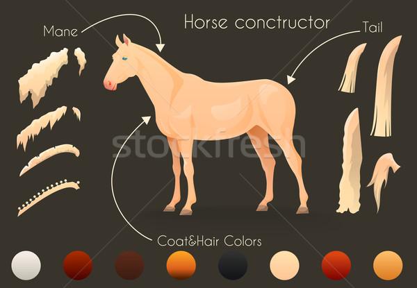 Propio caballo diseno deporte belleza Foto stock © Dashikka