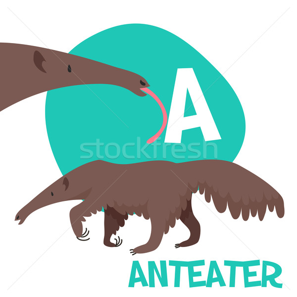 Funny cartoon animals vector alphabet letter set for kids  A is anteater. Stock photo © Dashikka