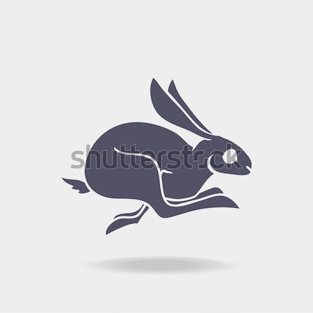silhouette of Fast rabbit with text inside on blur background. Stock photo © Dashikka