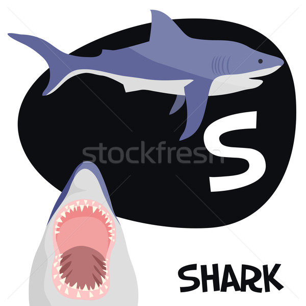 Funny cartoon animals vector alphabet letter set for kids. S is Shark. Stock photo © Dashikka