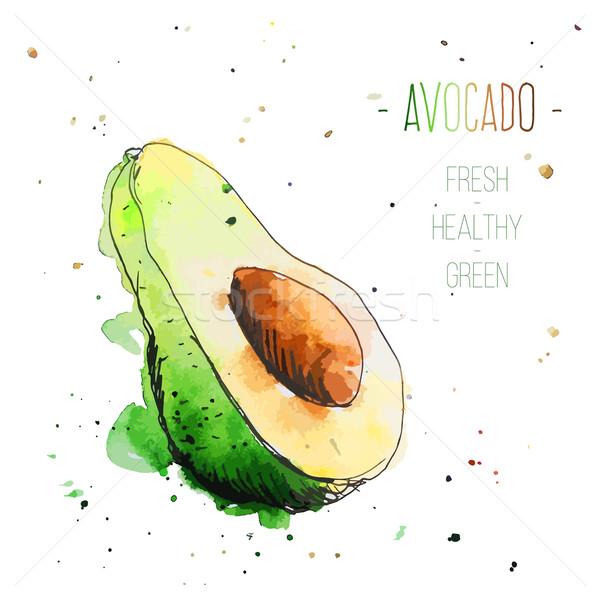 акварель авокадо свободный стиль свежие Сток-фото © Dashikka