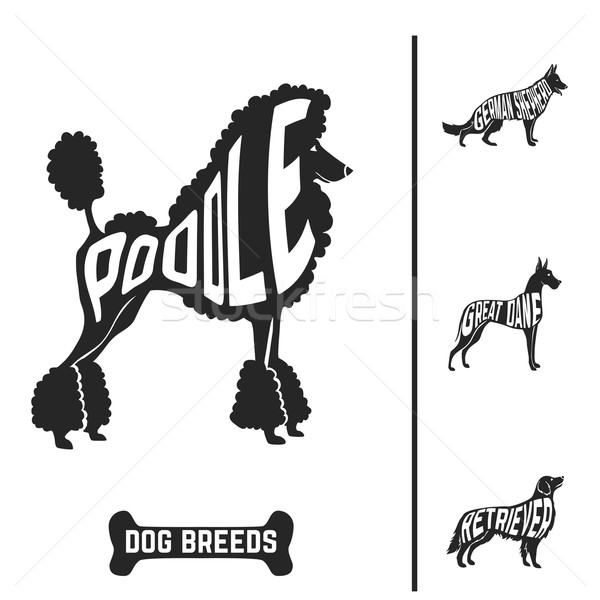 Isolated dog breed silhouettes set with names of breeds inside on white baclground.  Stock photo © Dashikka