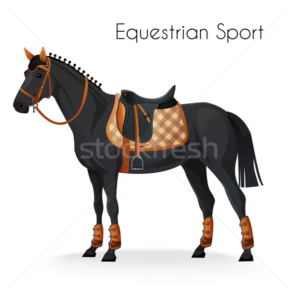 Horse with equestrian sport equipment  Stock photo © Dashikka