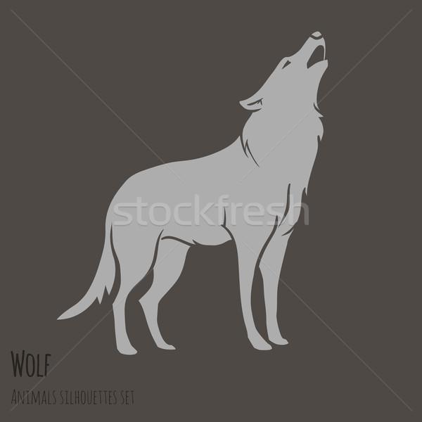 Grey Wolf Silhouette  Stock photo © Dashikka