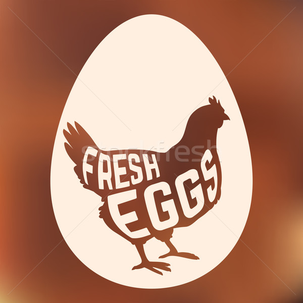 Egg with concept chicken silhouette inside on background Stock photo © Dashikka