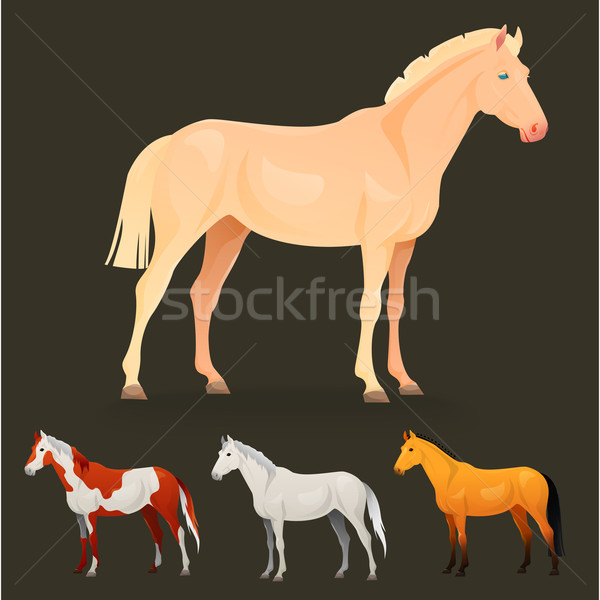 Set of realistic horse with different coats. Stock photo © Dashikka