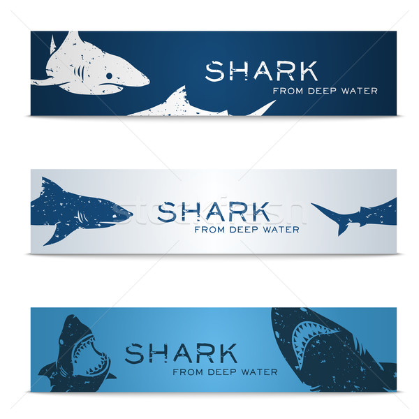 Establecer banners tiburones grande textura peces Foto stock © Dashikka