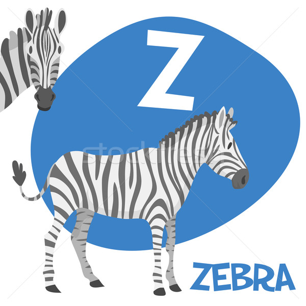 Funny cartoon animals vector alphabet letter set for kids. Z is zebra   Stock photo © Dashikka