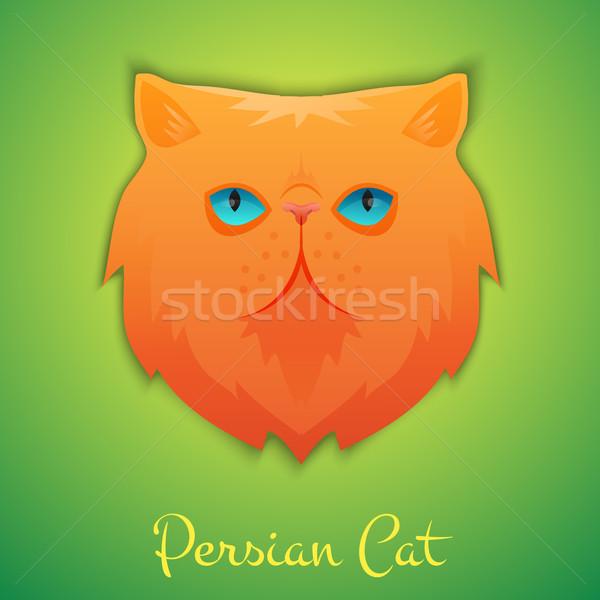 Perzische kat gezicht geïsoleerd schaduw kat ontwerp Stockfoto © Dashikka