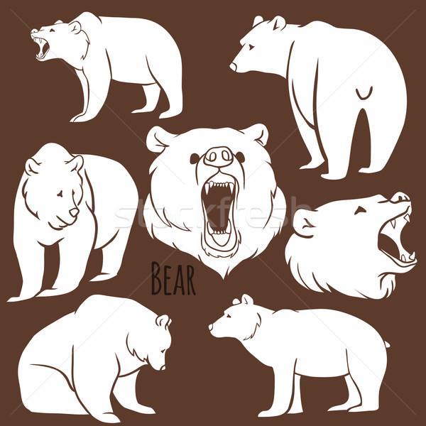 Set of wild bear silhouettes on the background.  Stock photo © Dashikka