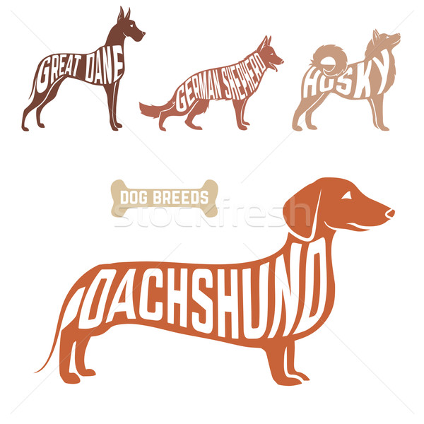 Stock photo: Isolated dog breed silhouettes set with names of breeds inside on white baclground.