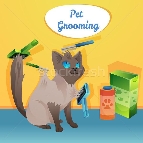 кошки характер жених салона волос знак Сток-фото © Dashikka