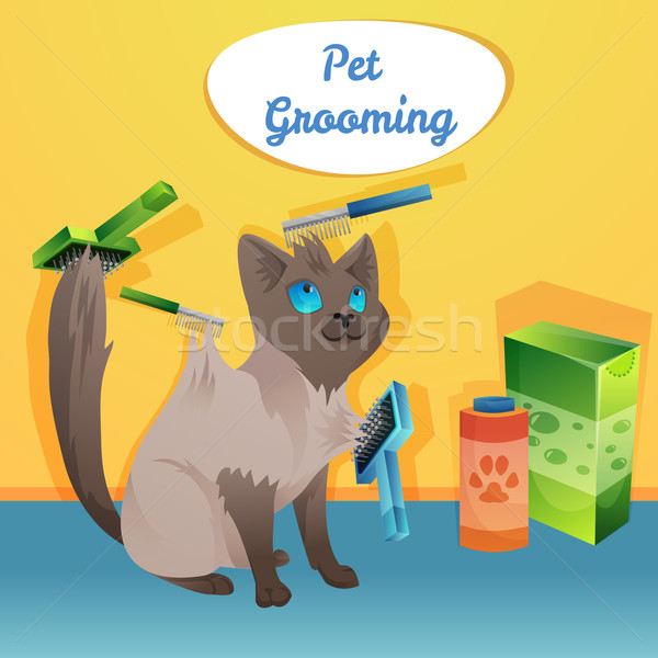 Kedi karakter damat salon saç imzalamak Stok fotoğraf © Dashikka