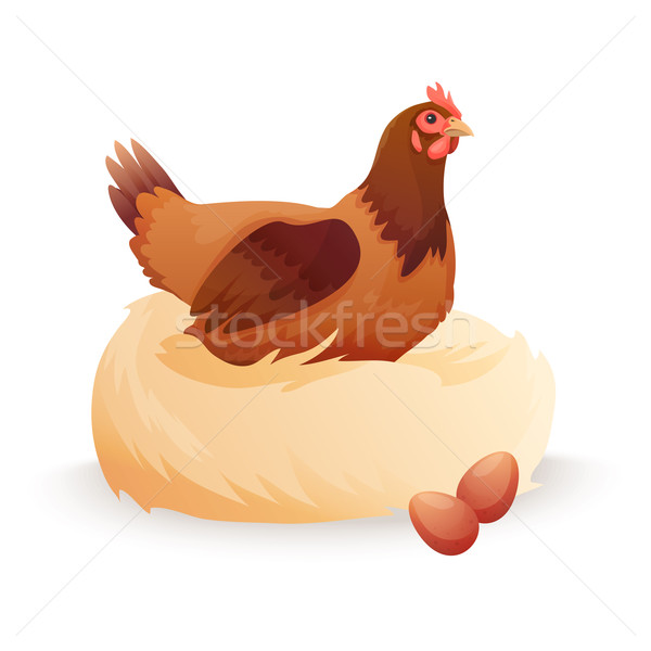 Hen in nest sitting on eggs. Stock photo © Dashikka