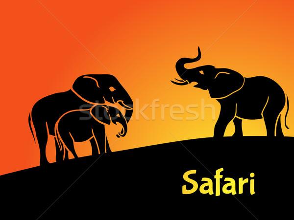 Elefantes safári silhuetas nascer do sol projeto arte Foto stock © Dashikka