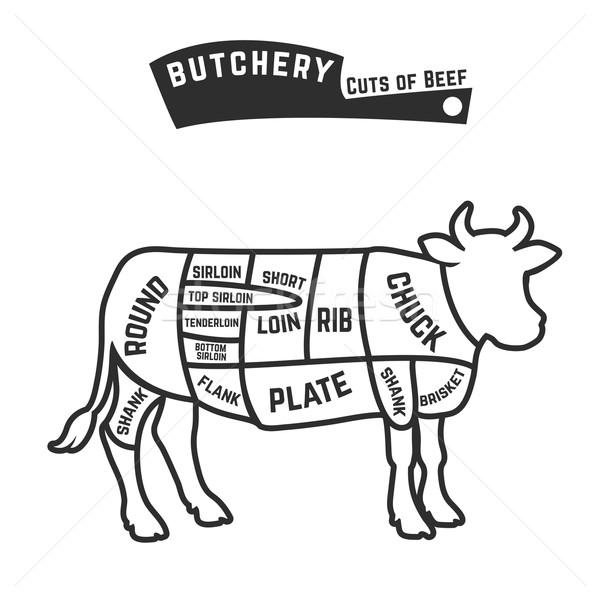 Beef cuts diagram Stock photo © Dashikka