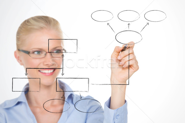 nordic girl illustrating the structure of her company Stock photo © Dave_pot
