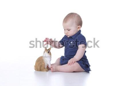 кролик Bunny играть Пасху девушки Сток-фото © Dave_pot
