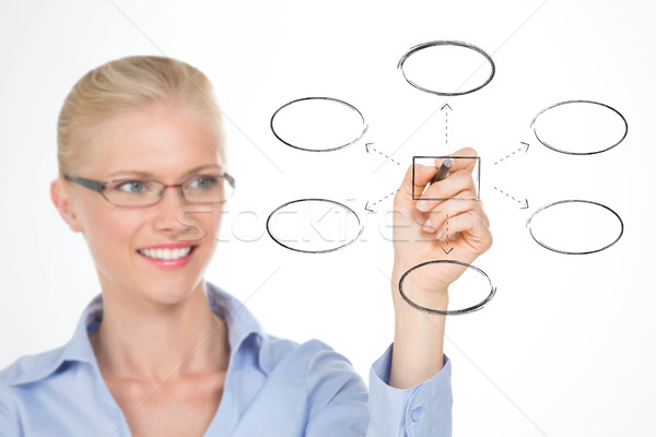 nordic girl illustrating the organizational chart of her company Stock photo © Dave_pot
