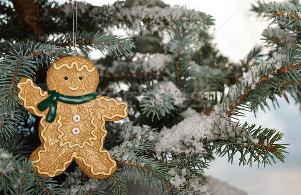 Christmas ginger bread boy on tree Stock photo © david010167