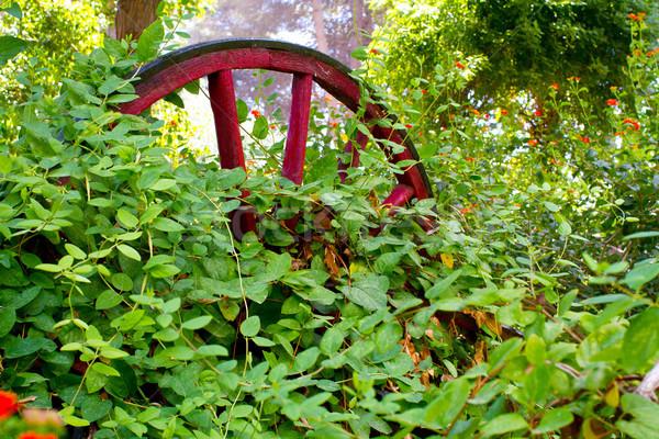 Overgrown wagon wheel Stock photo © david010167