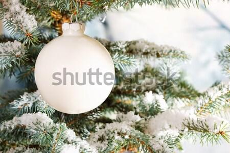 Beyaz cam Noel önemsiz şey kar ağaç Stok fotoğraf © david010167