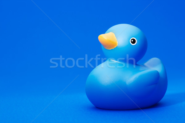 Blue Rubber Duck on blue background Stock photo © david010167