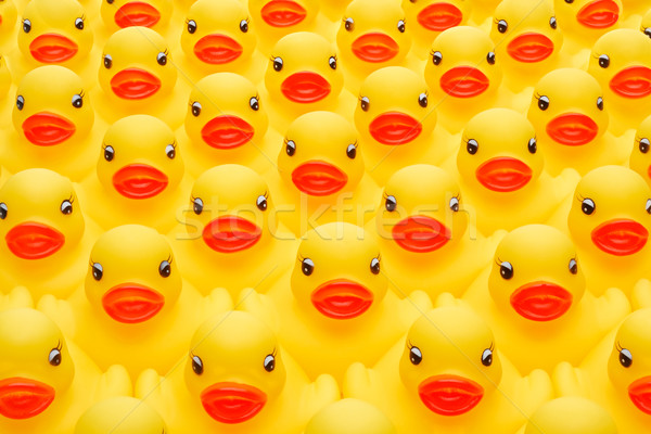 Rubber duck army Stock photo © david010167