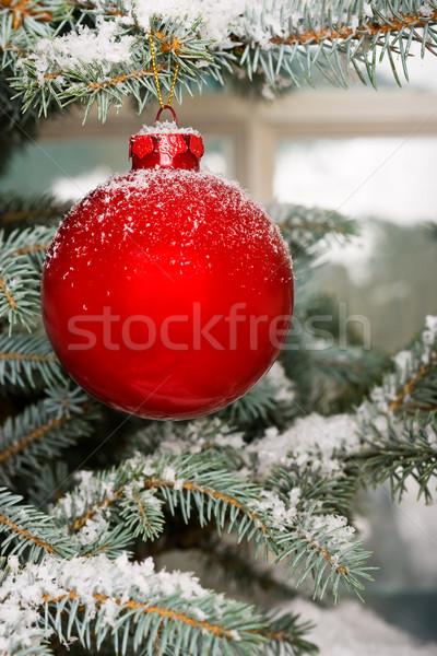 Parlak kırmızı Noel önemsiz şey ağaç kar Stok fotoğraf © david010167