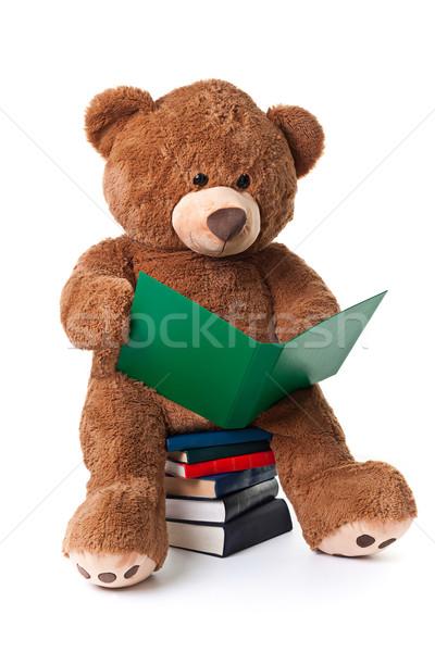 Czytania ponosi odizolowany posiedzenia starych Zdjęcia stock © david010167