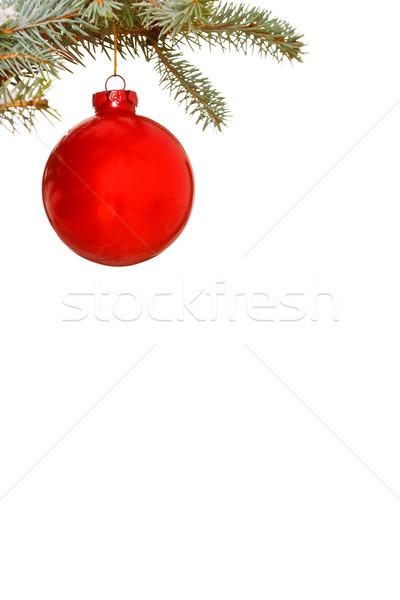 Parlak kırmızı Noel önemsiz şey ağaç cam Stok fotoğraf © david010167
