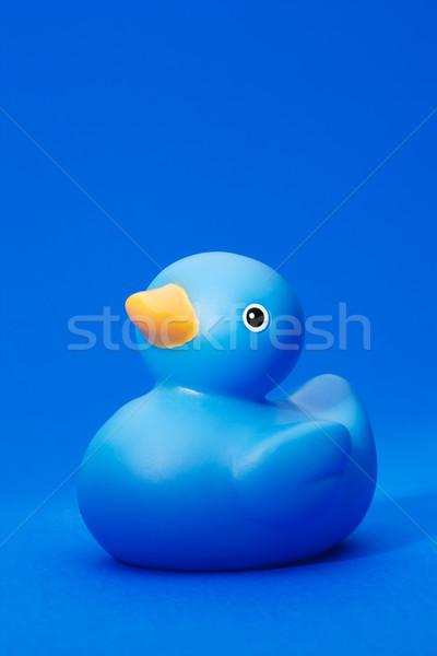 Mavi kauçuk ördek Stok fotoğraf © david010167