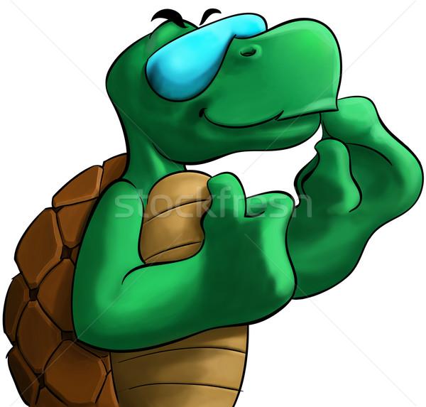 żółwia szczęśliwy uśmiechnięty słońce szkła Zdjęcia stock © davisales