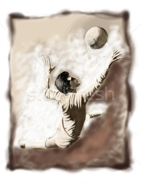 Football or soccer 01 Stock photo © davisales