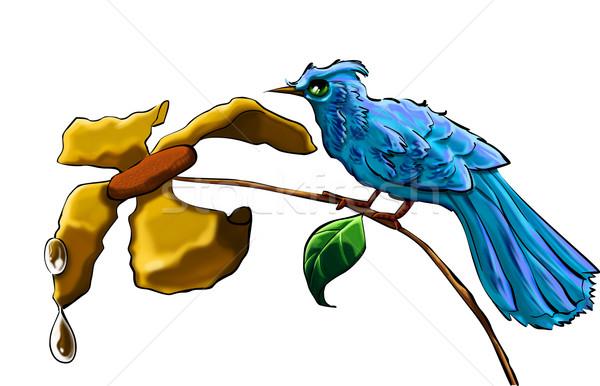 Niebieski ptaków żółty kwiat wody Pióro portret Zdjęcia stock © davisales
