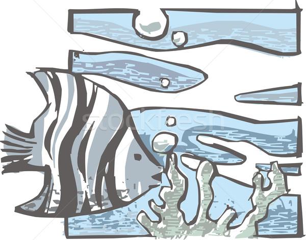 Poissons voir océan sable usine tropicales Photo stock © davisales