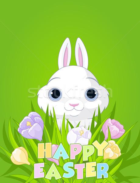 Easter Bunny with crocus bouquet Stock photo © Dazdraperma