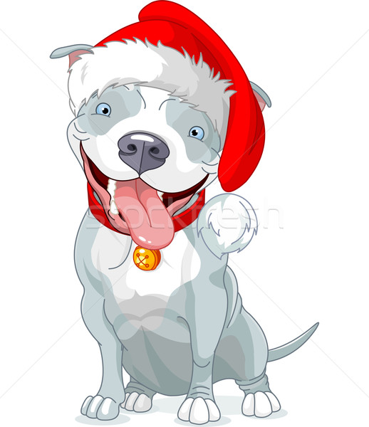 Christmas Pit Bull Dog Stock photo © Dazdraperma