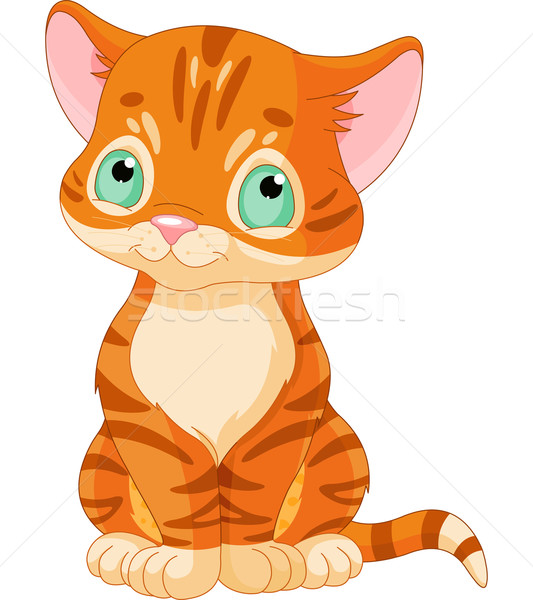 Cute Tabby Kitten  Stock photo © Dazdraperma