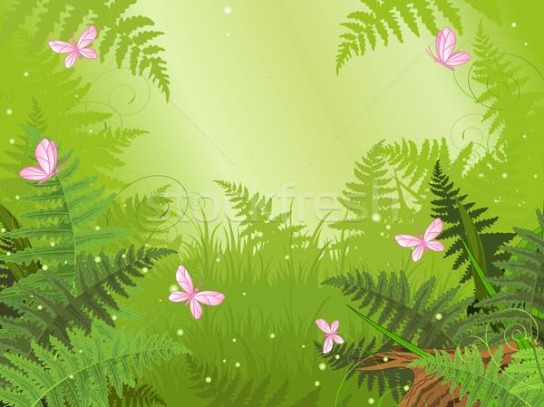 Magie bos landschap vlinder ontwerp achtergrond Stockfoto © Dazdraperma