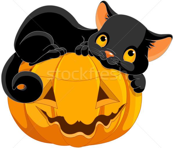 Halloween kiscica illusztráció boldogan sütőtök macska Stock fotó © Dazdraperma
