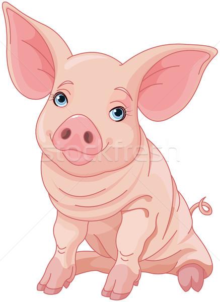 Piglet  Stock photo © Dazdraperma