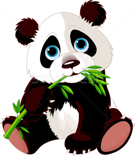 Panda eating bamboo Stock photo © Dazdraperma